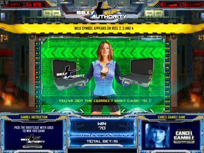 Authority Slot Gamble Feature